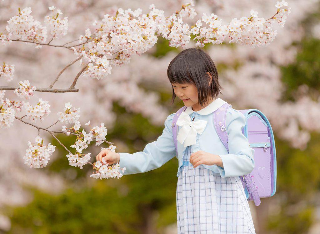 入学桜ロケーション撮影