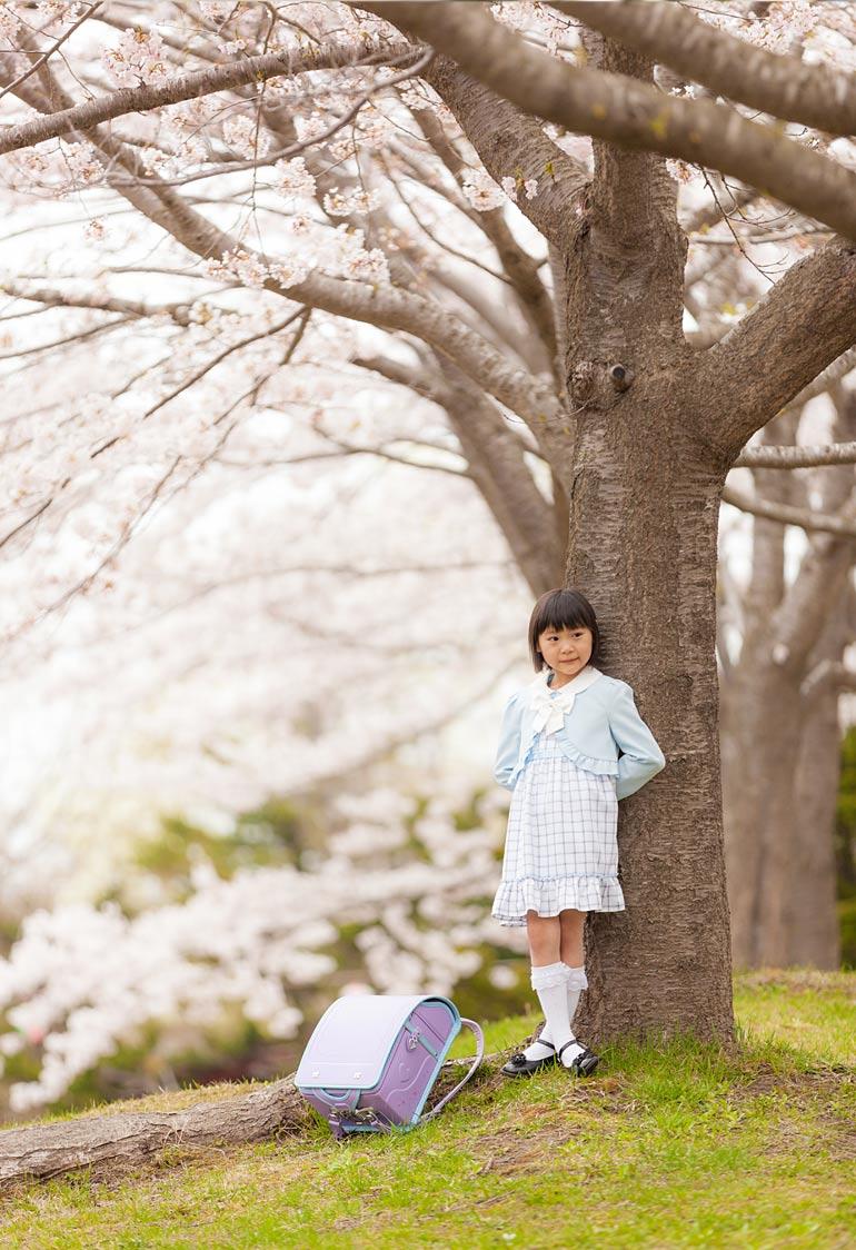 入学-桜の下で撮影