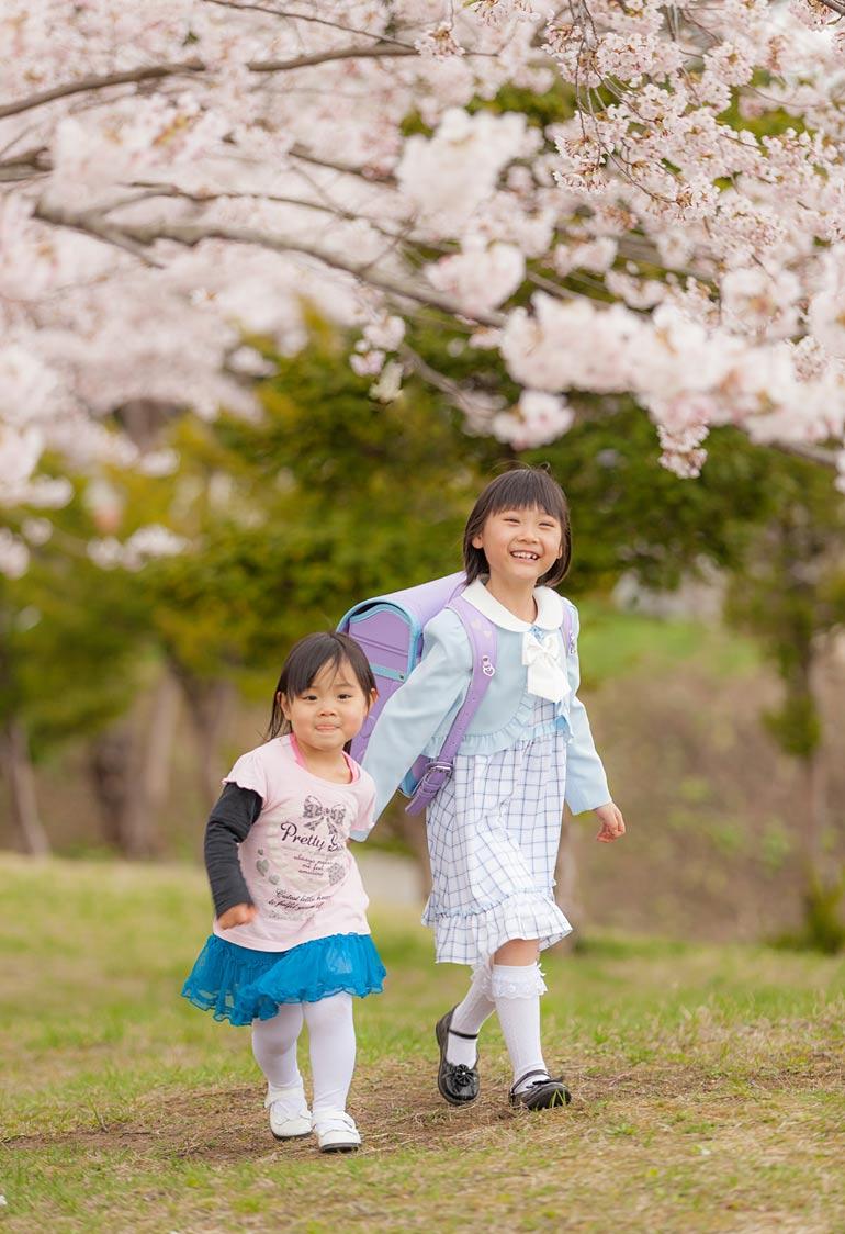 入学姉妹-桜で撮影